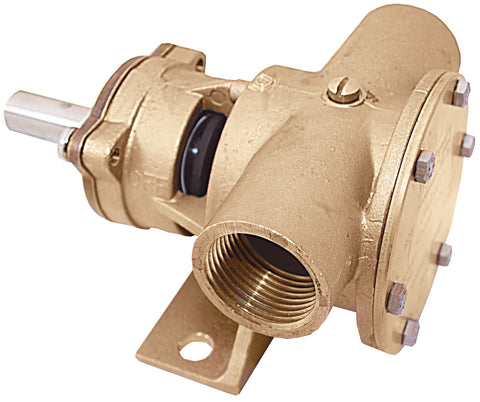 Bronze Flexible Impeller Pumps  1""