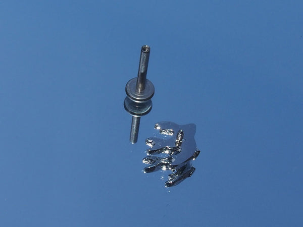 Internally Threaded Surgical Steel Sparrow Labret