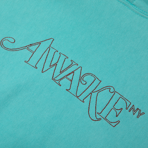 Classic Outline Logo Paneled Embroidered Hoodie - Teal