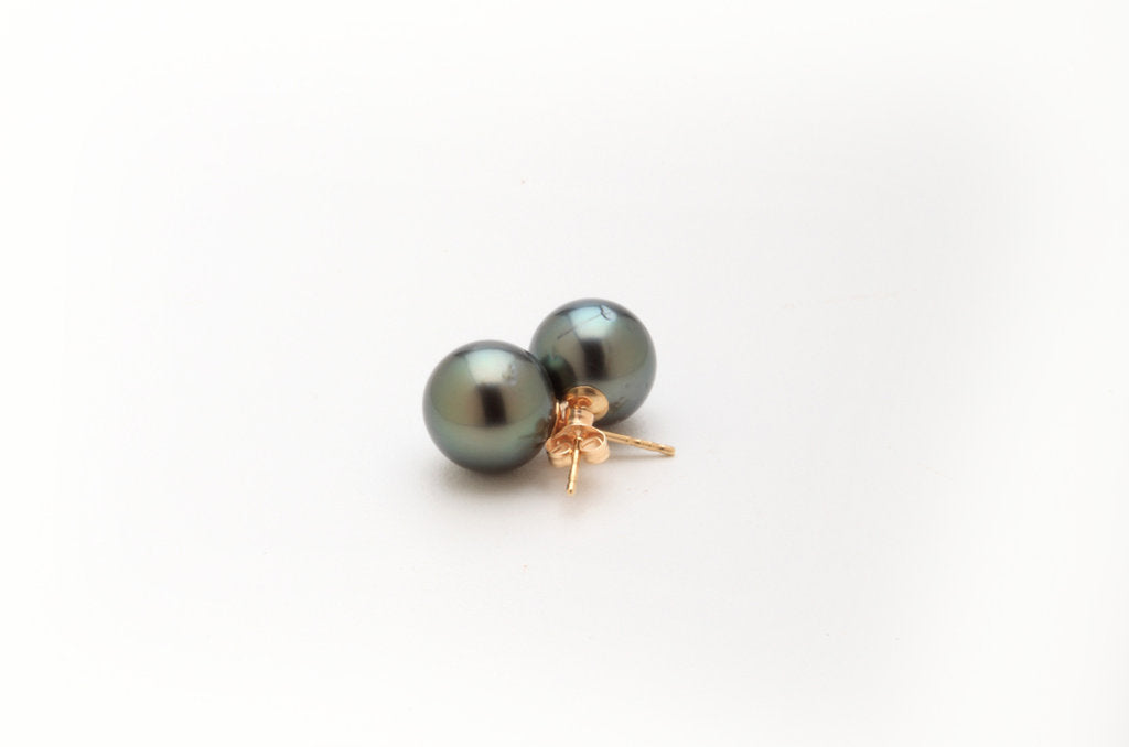 Tahitian Pearl Ear Studs on 14K Gold Studs
