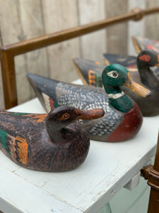 Selection of Italian decoy ducks