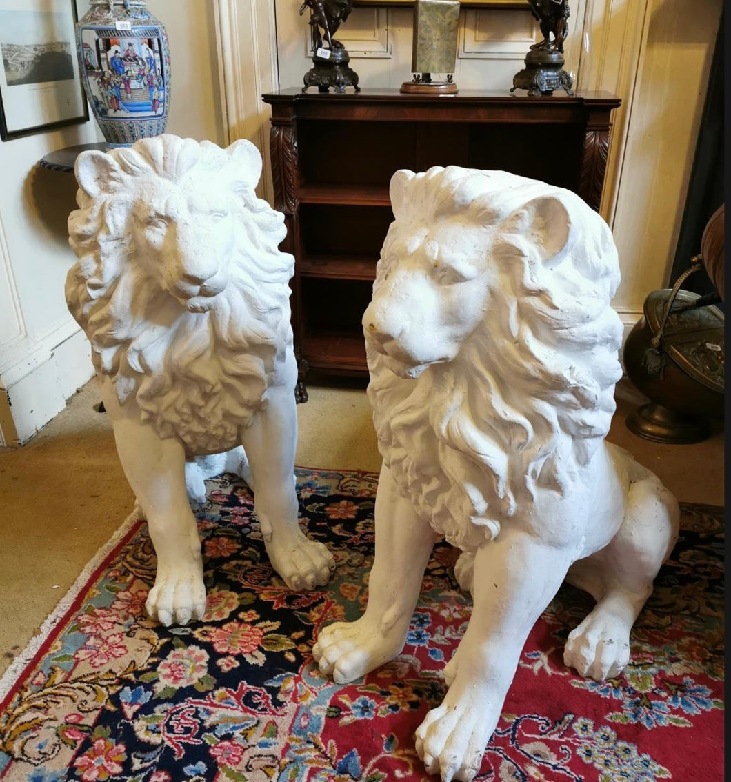 Great pair of plaster lions