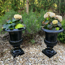 Load image into Gallery viewer, Pair of cast iron urns