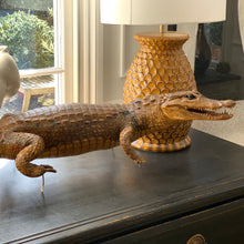 Load image into Gallery viewer, Taxidermy Caiman