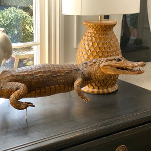 Taxidermy Caiman