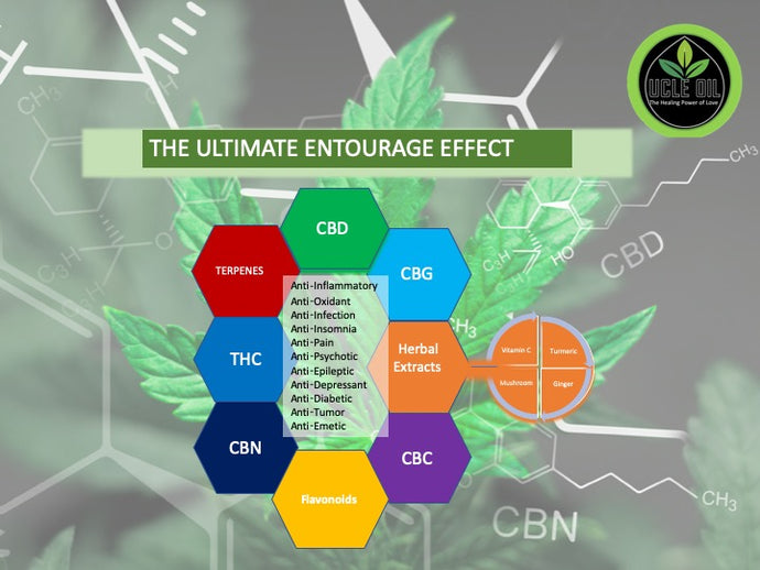 Why Full Spectrum CBD is the better defense for your ailments?