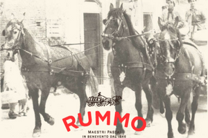 Pasta Rummo and Its 3 horses