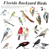 Bird Poster, 20 x 30, Signed