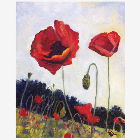 French Poppies, Print
