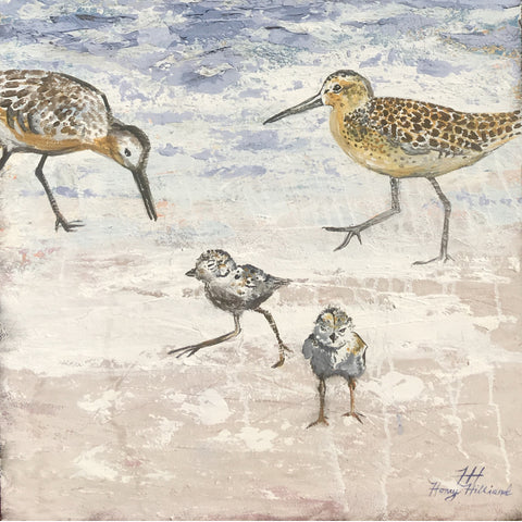 Shorebird Family, 48 x 24