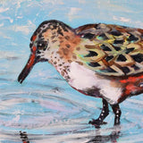 Detail of Shorebird Reflection by Honey Hilliard