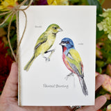 Songbirds Card Set