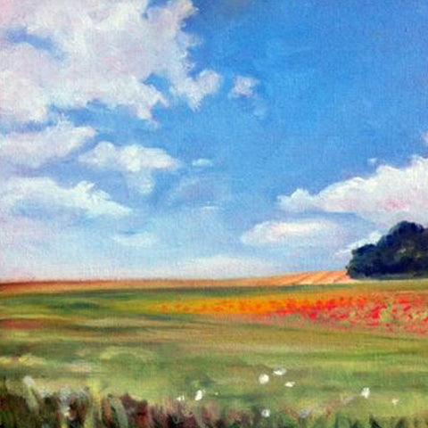 Poppy Field, oil, 8 x 10