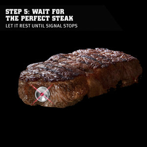 SteakChamp Smart Steak and Roast Thermometer