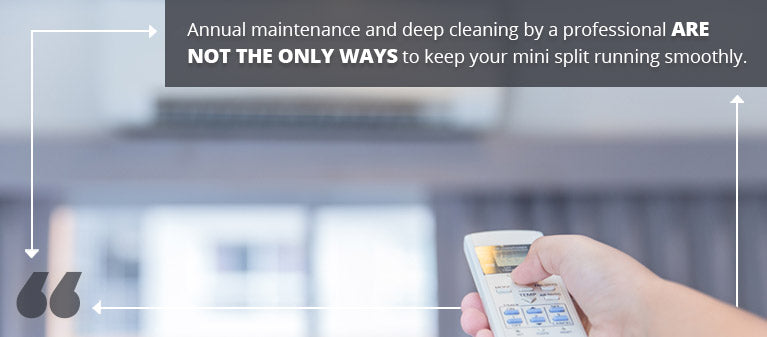 Annual Cleanings quote