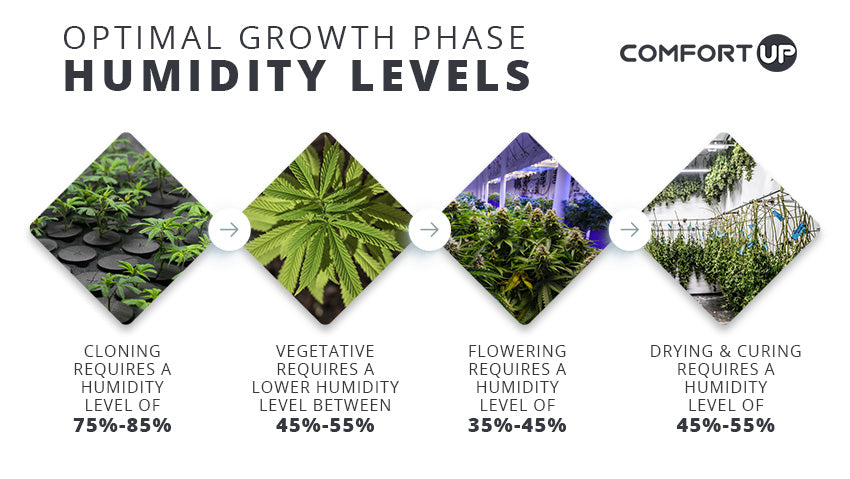 optimal growth phase humidity levels