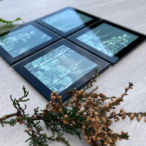 Close up of the botanical glass coasters by joy impressions