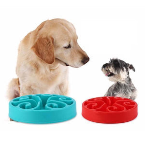 Pet Safe Anti-Choke Slow Feeder Dog Bowl