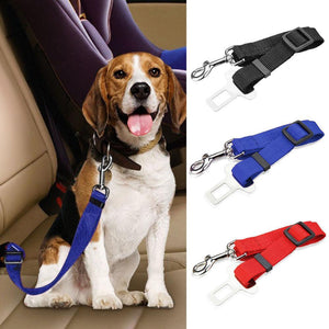 Dog Car Seat Belt