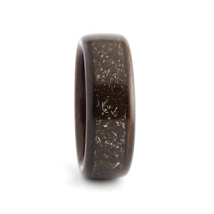Ebony, Stone, and Iron Meteorite Ring | Ébéniste Wood Rings – Ebeniste Wood Rings