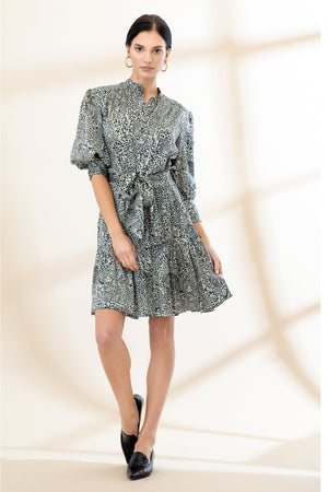 Load image into Gallery viewer, Emi Dress - Leopard Print - Preorder