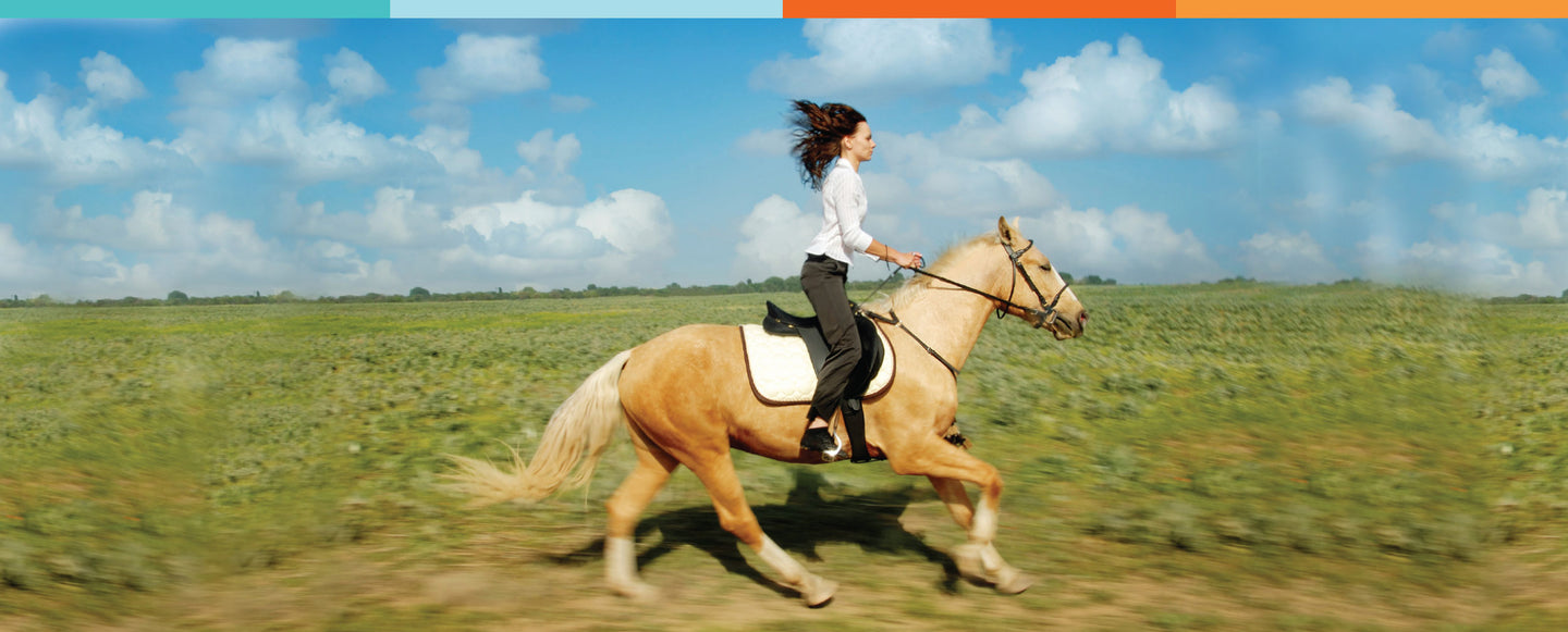 Horse Hip & Joint Remedies