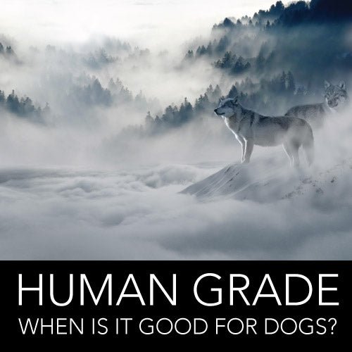 HUMAN GRADE: GOOD FOR DOGS?