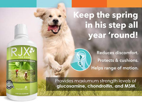 RJX Joint Supplement for Dogs