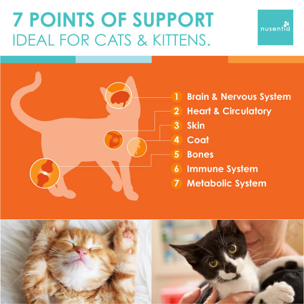 cat vitamin benefits