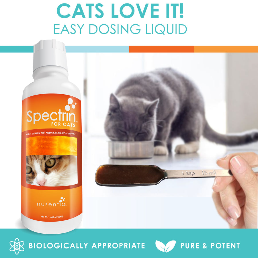 cat vitamin dosage