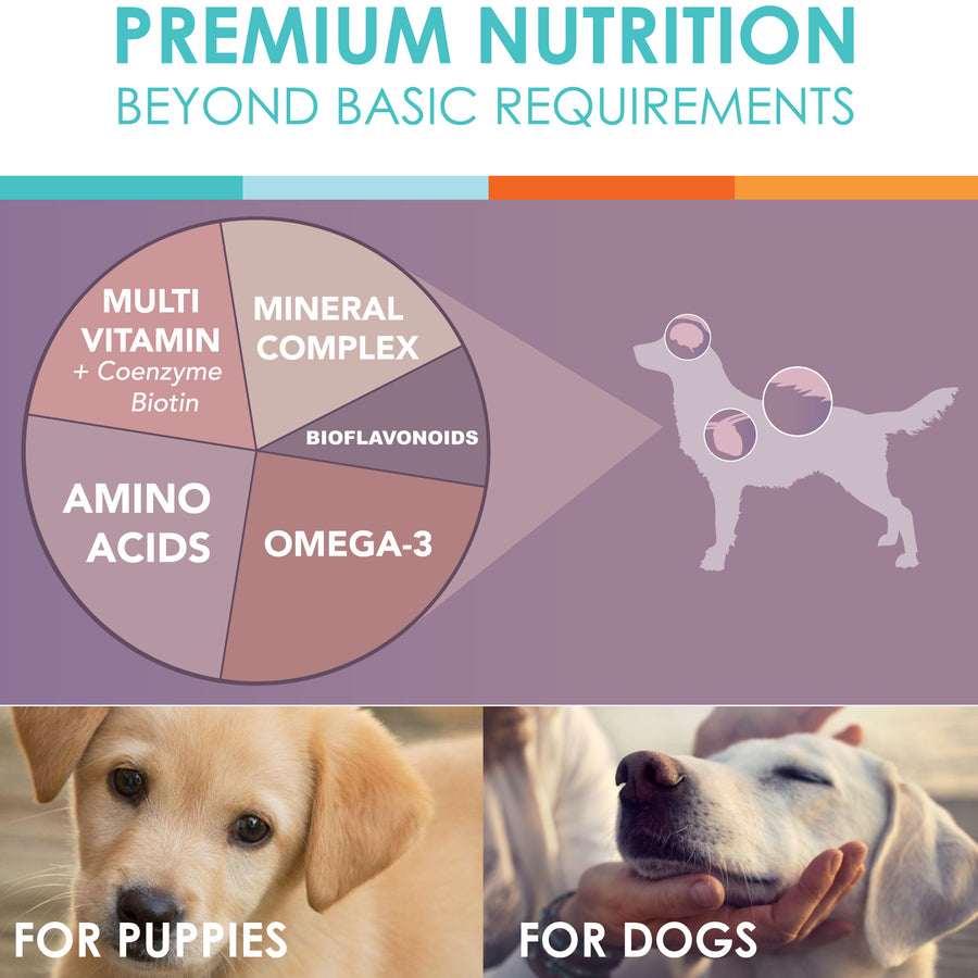 dermix benefits ingredients dogs