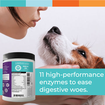 digestive enzymes dogs cats