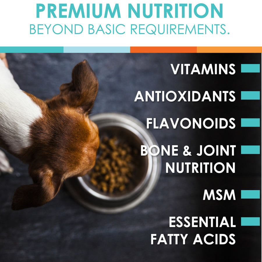 dog vitamins ingredients