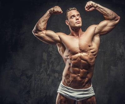 The newbie's guide to hypertrophy