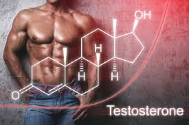 The Bottom Line - Boost your Testosterone