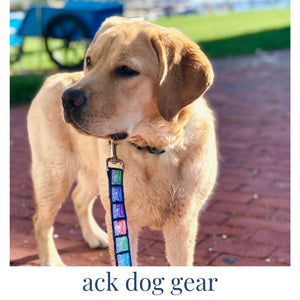 nantucket dog collar and Nantucket leashes