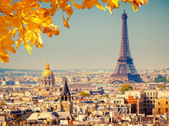 Fall in Paris