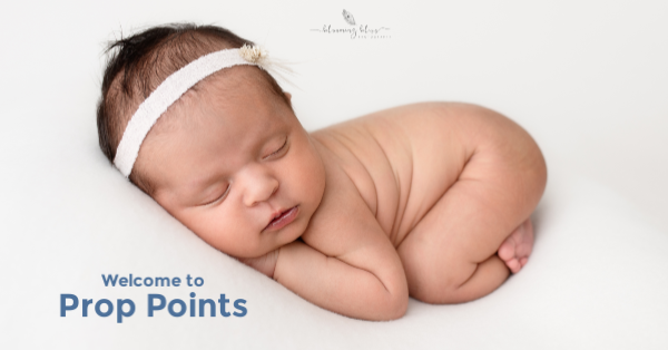 Rewards Program - Tiny Tot Prop Shop - Newborn Photo Props - Canadian Photography Props
