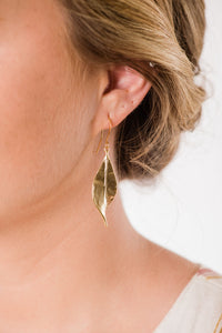 Curled Leaf Earrings - Silver
