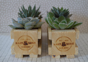 Recycled Pallet Succulent Crates- Pair of 2 Crates