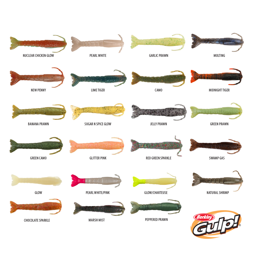 BERKLEY GULP SHRIMP 3IN/8CM - 6PK