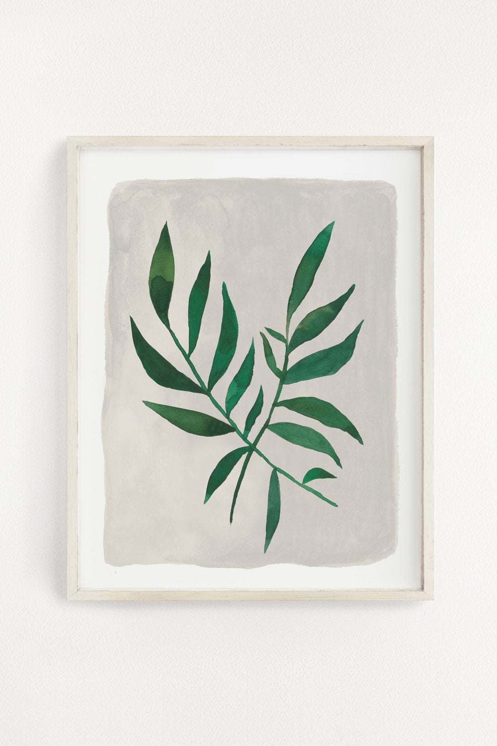 Jungle Fern Art Print 11X14