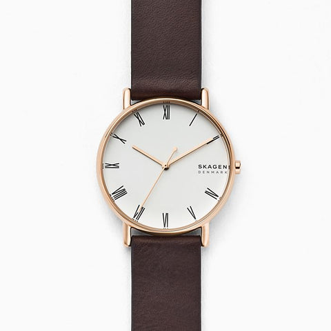 SKAGEN SKW6493 Signatur Watch