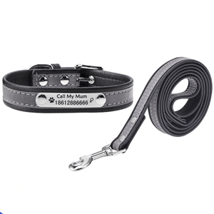 Pups! Reflective leash - 5 colours available