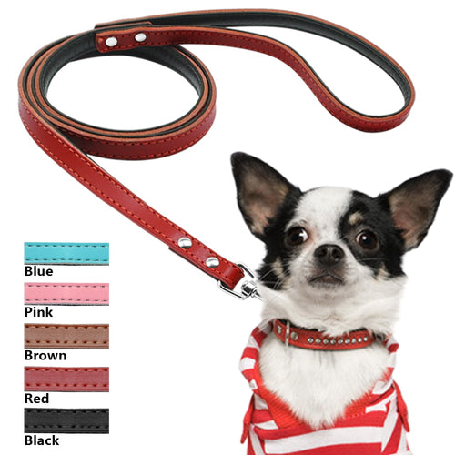 Pups! Leather Leash - 5 colours available