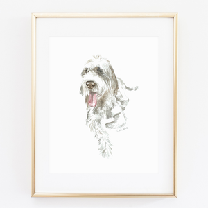 Dog Watercolor