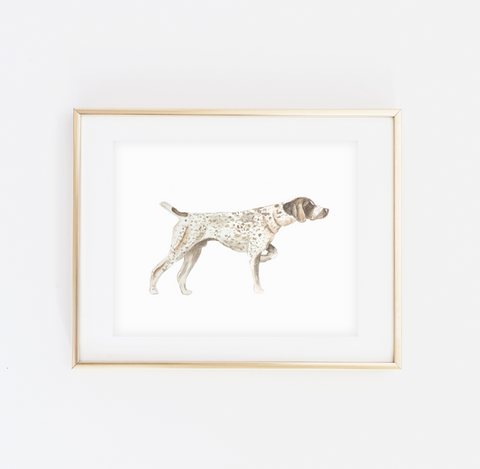 German Shorthair Pointer Art Print