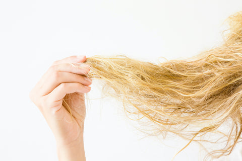 image of woman holding up frizzy hair sign of hair damage and need for a product to repair damaged hair and smooth frizzy hair