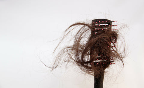 photo of hair loss and hair breakage on a brush
