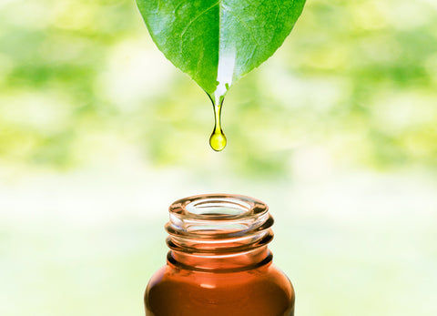 green leaf dripping oil into bottle for image of karanja oil for ayurvedic medicine for hair loss